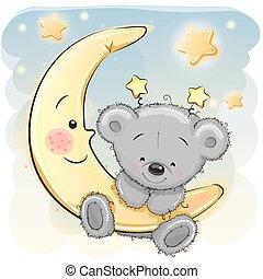 Teddy Bear on the moon