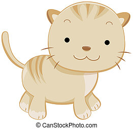A Cute Chubby Cat Facing Sideways Isolated Against White Background