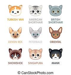 Cute cat icons, set III