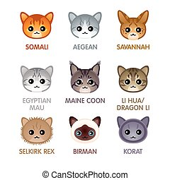Cute cat icons, set IV - Kawaii cat breed head icons
