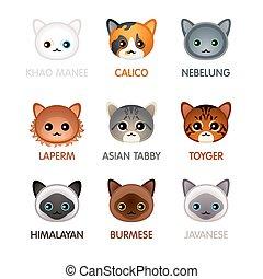Cute cat icons, set V - Kawaii cat breeds head icons