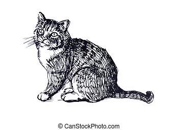 Cute cat. Line drawing
