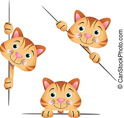 Cute cat peeking from behind in various positions