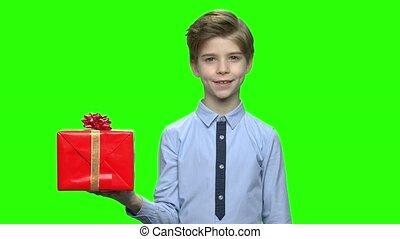 Cute caucasian little boy holding red gift box.
