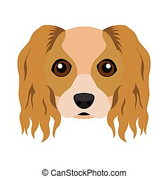 Cute cavalier king charles spaniel dog avatar