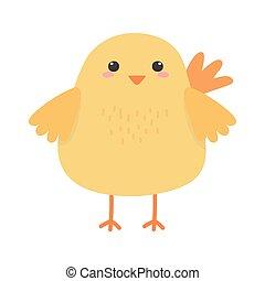 cute chicken animal cartoon isolated icon design