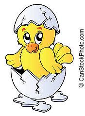 Cute chicken in broken eggshell - vector illustration.