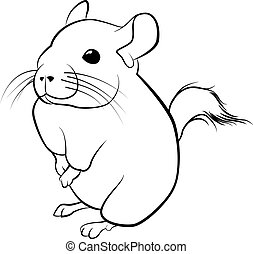 cute chinchilla line art. black line illustration - cute...