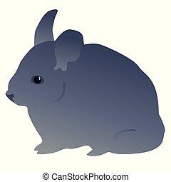 little mouse, gray color Fluffy pet