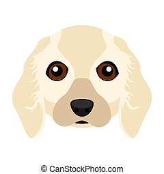 Cute Cocker Spaniel dog avatar