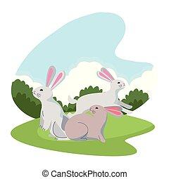 cute, coelhos, animais, três, desenhos animados