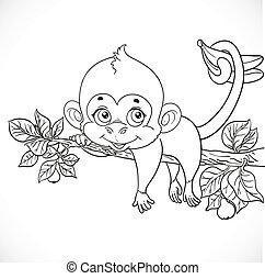 cute, coloração, macaco, segura, rabo, lazily, ramo, esboços, mentindo, bananas