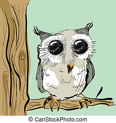 Cute Colored Owl