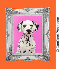 Cute dalmatian puppy portrait facing the camera on a pink background with a silver picture frame and an orange border