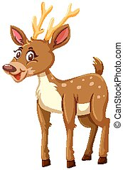Cute deer on white background