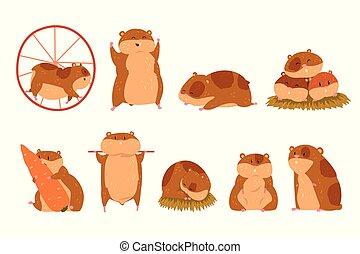 cute, diferente, caráteres, engraçado, jogo, situações, vetorial, hamster, animal, ilustrações, caricatura