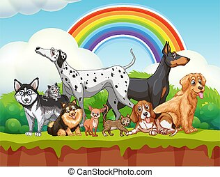 Cute different dogs group in nature scene with rainbow