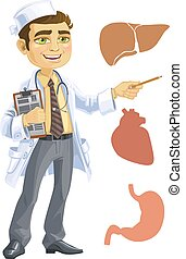 Cute doctor - indicating the liver, heart, stomach