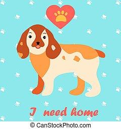 Cute dog I need home text. Homeless animals concept, pets adoption theme.