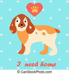 Cute dog I need home text. Homeless animals concept, pets adoption theme.
