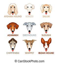 Cute dog icons, set V