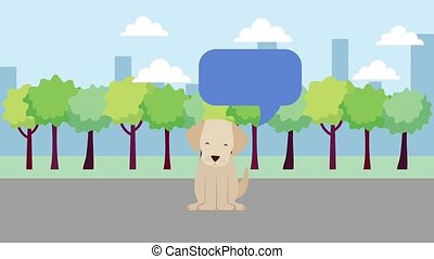 cute dog mascot in the park speak bubble animation hd