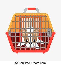 cute dog puppy inside plastic carrier