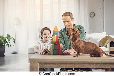 Cute dog watching how her owners building little house