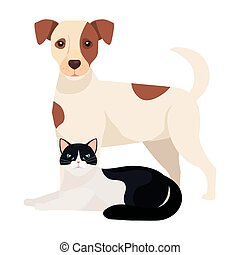 cute dog with cat black and white