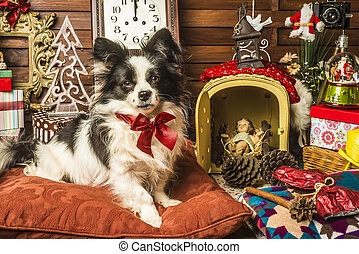 Cute dog with red bow sitting on pillow with Christmas presents