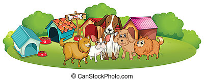 Cute dogs outside the doghouses