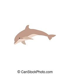 Cute dolphin jumping cartoon character illustration. Vector