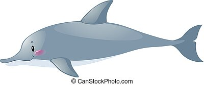 Cute dolphin on white background