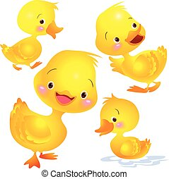 Cute duck yellow many actions