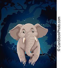 Cute elephant in the forest at night