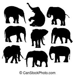 Cute Elephant Silhouettes
