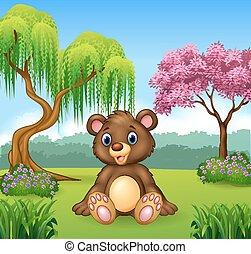 cute, engraçado, urso, sentando