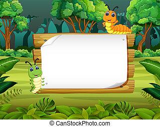 cute, espaço, madeira, lagarta, tábua, fundo, em branco, floresta