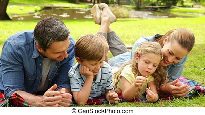Cute family lying on a blanket in the park on a sunny day