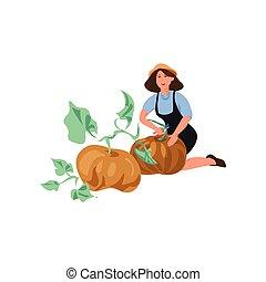 Cute farmer woman collect natural big pumpkin