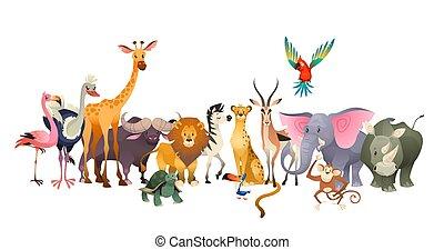 cute, fauna, flamingo, safari, papagaio, feliz, áfrica, animals., leão, girafa, selva, animal, elefante, selvagem, rinoceronte, avestruz, zebra