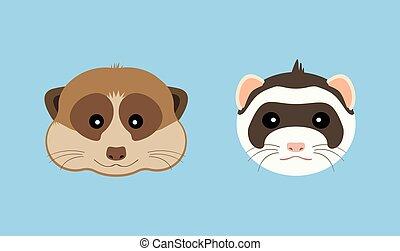 Cute ferret and meerkat muzzle. Vector flat design illustration.