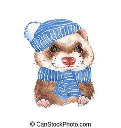 Cute ferret in blue hat 2