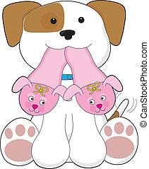 cute, filhote cachorro, chinelos