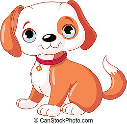 cute, filhote cachorro