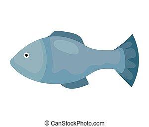 cute fish animal on white background