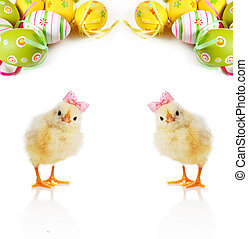 Cute fluffy chicks and Easter Eggs - Chics