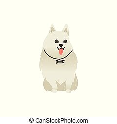 Cute fluffy dog sitting straight, front view