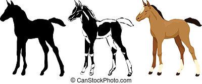 Cute Foal Set