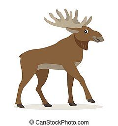 Cute forest animal, friendly moose with big horns